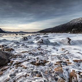 Iced rocks by Benny Høynes - Landscapes Prairies, Meadows & Fields ( shore, hill, winter, cold, ice, sea, lake, rocks, norway )