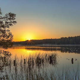 by Bojan Bilas - Landscapes Sunsets & Sunrises ( dawn, nature, waterscape, autumn, fall, suomi, finland, forest, landscape, light, woods, rauma )