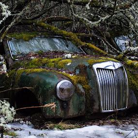 by Anngunn Dårflot - Transportation Automobiles
