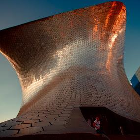 Soumaya by Cristobal Garciaferro Rubio - Buildings & Architecture Places of Worship ( mexico city, mexico, museum, soumaya museum, soumaya )