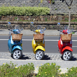 Scooters by Nick Parker - Transportation Motorcycles ( 3, colors, scooters, three, colours )