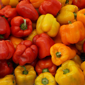 Bell Peppers by VAM Photography - Food & Drink Fruits & Vegetables ( peppers, farmers market, nature, colorful, color, vegetables, nyc, places,  )