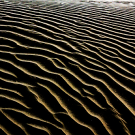 Desert Storm by Ajith Iddya - Abstract Patterns ( sand, shades, patterns, sand path, tint,  )