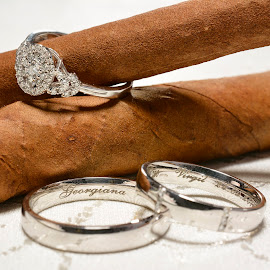 Wedding rings by Sorin Lazar Photography - Artistic Objects Jewelry ( arrangement, colors, engagement_ring, wedding_rings )