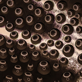 Attack of the Nanobots by Sarthak Bisaria - Abstract Macro ( water, flash, reflection, ring flash, macro photography, jar,  )