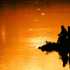 Fishing with Dad by Cecilia Sterling - People Street & Candids ( father and daughter, sunset, family, lake, fishing,  )