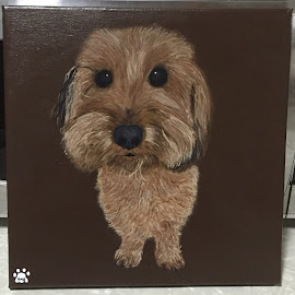 Mylo by Kristen Barth - Painting All Painting ( canvas, acrylic, dog, painting, portrait )