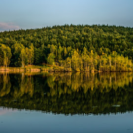 Mirror by Nicu Ivan - Landscapes Waterscapes ( water, autumn, lake, forest )