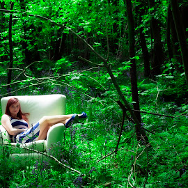 Saff and the chair by Danny Simes - Landscapes Forests ( renewal, green, trees, forests, nature, natural, scenic, relaxing, meditation, the mood factory, mood, emotions, jade, revive, inspirational, earthly )