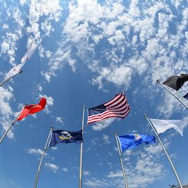 Flags by Donald Casad - City,  Street & Park  City Parks ( clouds, fisheye, sky, flags, park )