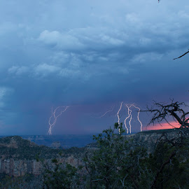 Thunderstorm on the North Rim by Gene Curl - Landscapes Weather ( national park, lightening, weather, nightscape, grand canyon,  )