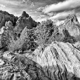 Garden of the Gods by Tony Lobato - Black & White Landscapes ( clouds, blackandwhite, black and white, rocky mountains, colorado, sandstone, rock formation, landscape, garden of the gods,  )