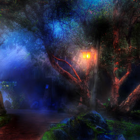 Evening in Ecuador by Roch Hart - Digital Art Places ( hdr, ecuador, blue, green, night, evening, light, roch hart, lights )