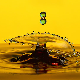 Waterdrops by Fred Øie - Abstract Water Drops & Splashes ( abstract )