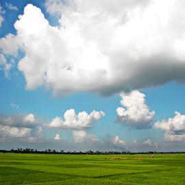 Farm Land by Saptak Banerjee - Landscapes Prairies, Meadows & Fields ( sky, nature, blue, green, white, land, cloud )