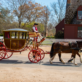 Princess and Her Horse by Sean Doran - Transportation Other ( buggy, carriage, horse, williamsburg, virginia )