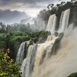 Iguazú First  and Second Floor by Jesús Municio - Landscapes Waterscapes ( water, argentina, iguazú, jungla, vegetacion, bosque, nature, jungle, nuraleza, fall, waterfall, forest, vegetation )