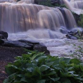 Reedy River Falls by Jo Anne Keasler - Novices Only Landscapes