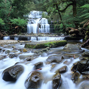 Australia, Tasmania, Great Western Tiers, Liffey Falls.jpg