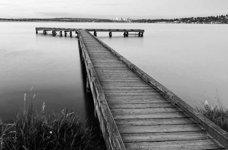 Journey's End by Fitz C - City,  Street & Park  City Parks ( water, smooth, silky, wood, black and white, grass, mood, pier, city )