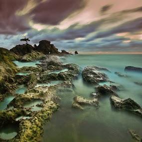 aku di Layangan by Md Arif - Nature Up Close Rock & Stone