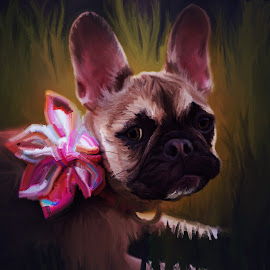 Maggie by Beth Ann - Illustration Animals ( frenchie, puppy, french bulldog, dog, fawn, sable )
