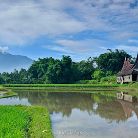 Reflection of my village by Frederick Tarigan - Landscapes Travel ( field, reflection, village, green, indonesia, landscape )