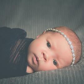 Harper by Jenny Hammer - Babies & Children Babies ( girl, beautiful, baby, cute, newborn )