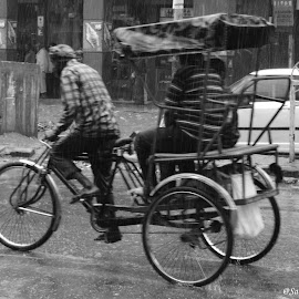 Rickshaw in Rain by Samrat Sarkar - City,  Street & Park  Markets & Shops ( street, water trails, rickshaw, pulled, rain )