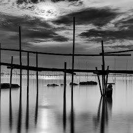 by Setiawan Halim - Black & White Landscapes (  )