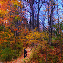Hiking in autumn by Morris Fremar - Landscapes Mountains & Hills