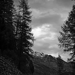 mountain road by Lilian Iatco - Landscapes Travel ( car, black and white, switzerland, road, travel,  )