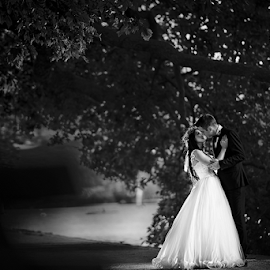 forest love by Marius Marcoci - Wedding Bride & Groom