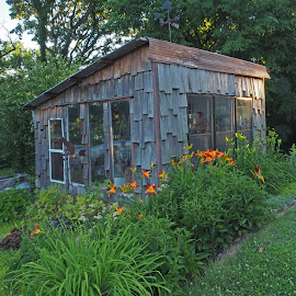 by Howard Mattix - Buildings & Architecture Other Exteriors ( potting shed, buildings, flower gardens, landscape, landscaaape )