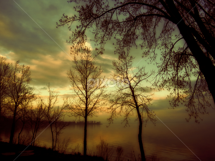 cromantique by Otto Mercik - Landscapes Weather ( pwcfoulweather-dq, silhouette )