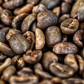 toraja coffee beans by Hartono Wijaya  - Food & Drink Fruits & Vegetables ( toraja, macro, sulawesi, macro photography, indonesia, beans, fruits, vegetables, fruits and vegetables, roasted, close up )