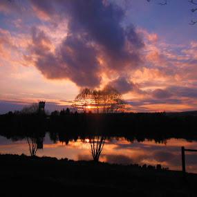 near a pond by Libuše Kludská - Landscapes Sunsets & Sunrises