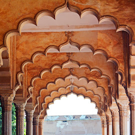 Inside Agra fort by Asif Bora - Buildings & Architecture Public & Historical