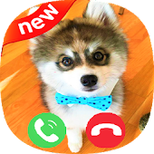 App Dog Calling prank apk for kindle fire