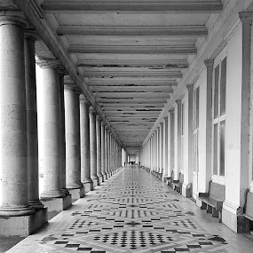 Thermae Palace Arcade by John  Pemberton - Buildings & Architecture Architectural Detail ( monochrome, columns, architecture, hotel, arcade )