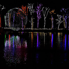 Lights by Dave Lipchen - Public Holidays Christmas