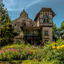The haunted hause! by Jesus Giraldo - Buildings & Architecture Homes ( style, hause, colors, summer, architecture, haunted, beauty, flowers, garden )