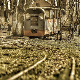 Thomas by Zoly Szilveszter - City,  Street & Park  Amusement Parks ( train tracks, park, train, cityscape, city park, thomas )