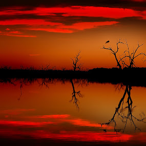 Minandee Lakes by William Greenfield - Landscapes Waterscapes ( colour, water, reflection, red, sunset, lake, minandee )