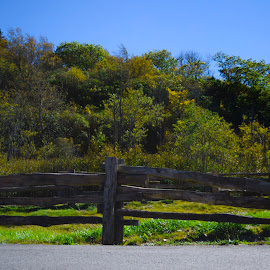 Fence by Tim Wallin - Novices Only Landscapes ( parkway )