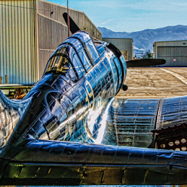 Douglas SBD5 Dauntless ready to roll by Tom Anderson - Transportation Airplanes ( aviation, california, 2011, chino, planes of fame,  )