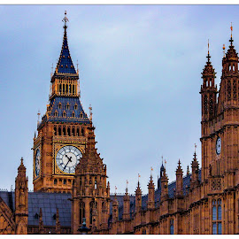 The Palace of Westminster  by Igor Modric - Buildings & Architecture Public & Historical