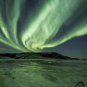 Aurora green by Benny Høynes - Landscapes Starscapes ( winter, green, northern lights, aurora borealis, norway,  )