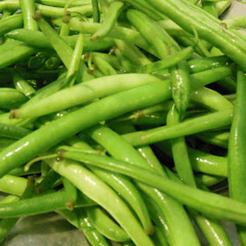Fresh Green Bean Side Dish with Toasted Almonds