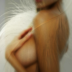 PIUMA by Carmen Velcic - Digital Art People ( abstract, body, girl, woman, she, feathure, digital )